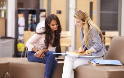 Benefits of Hiring a Mentor for Your NCS Business